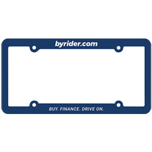 *TEXAS* License Plate Frame